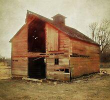 Simple Barn ll by BarnArtandMore