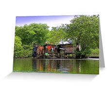 Life In Bocas Del Toro, Panama Greeting Card