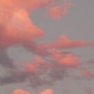 Clouds of PINK by D. D.AMO