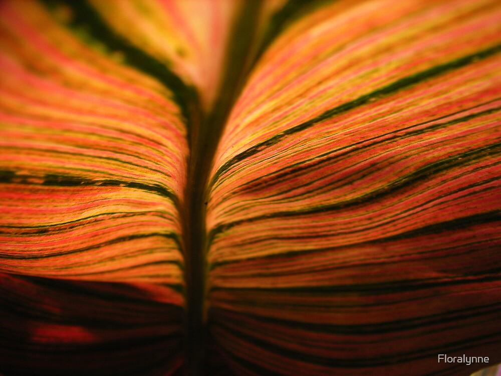 tropicana by Floralynne