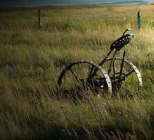 Prairie Scene by Al Bourassa