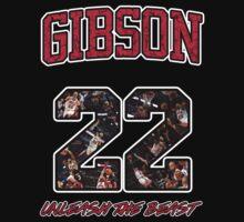 Chicago Bulls NBA - Taj Gibson v2.0 by BreakingBadass