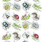 Bugs by Kate Garrett