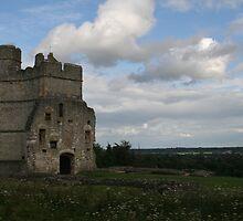 Donnington Castle by jonathonlyons
