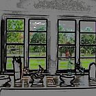 kitchen window by Michael L Dye
