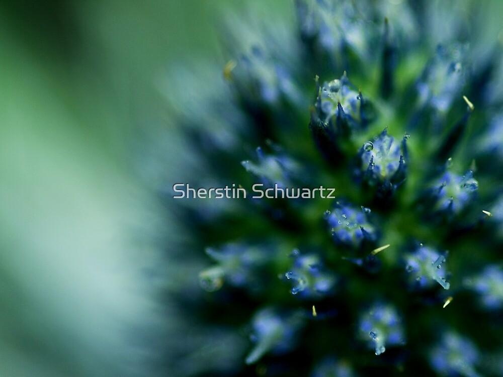 Aquamarine.  by Sherstin Schwartz