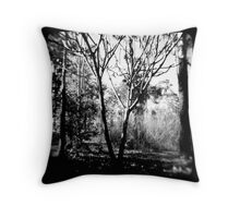 Mysterious Enchantment Throw Pillow