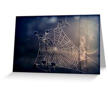 Spiders Sunrise Greeting Card