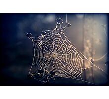 Spiders Sunrise Photographic Print