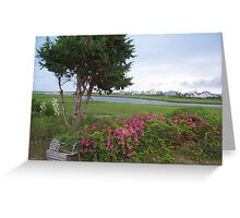 View from a patio Greeting Card