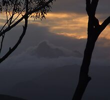 Misty Mt Warning by Cathie Sherwood