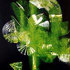 Kaleidoscope by david hatton