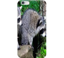 HOLEY MOLEY!  LOOK AT THAT! iPhone Case/Skin