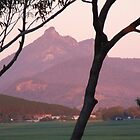 Dawn on Mt Warning by Cathie Sherwood