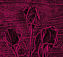 Roses in Pink and Black Textured Digitally Enhanced Photograph Art by Adri Turner