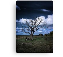 Shadow of the Day Canvas Print