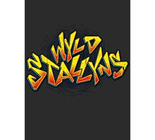 Wyld Stallyns  Photographic Print