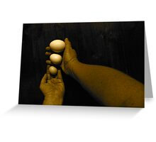3 Eggs Greeting Card