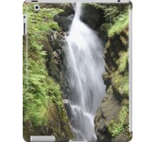 Aira Force iPad Case/Skin