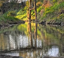 Torrens Bridge Pool by David Creed