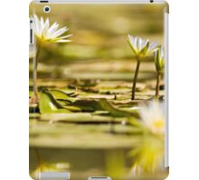 Nymphaea caerulea, known primarily as blue lotus (or blue Egyptian lotus) iPad Case/Skin