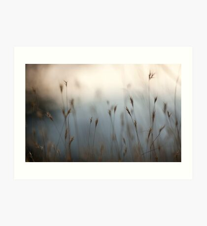 Selective focus on a plant in a wild field  Art Print