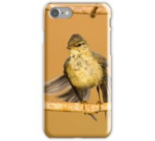 Juvenile male Willow Warbler (Phylloscopus trochilus).  iPhone Case/Skin