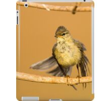 Juvenile male Willow Warbler (Phylloscopus trochilus).  iPad Case/Skin