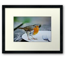 Who ate all the pies? Framed Print