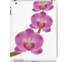 Flower Orchid 3 iPad Case/Skin
