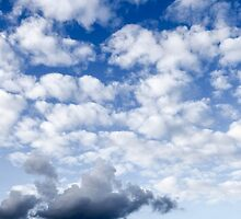 Cumulus Cloudscape white clouds in blue sky background  by PhotoStock-Isra