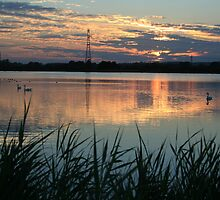 Longham Lakes by RedHillDigital