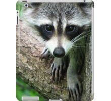 RACCOON PORTRAIT WITH PAWS & CLAWS  iPad Case/Skin