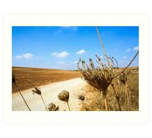 Desert Landscape with blue sky Art Print