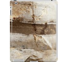 Rock strata closeup - sediment layers are visible  iPad Case/Skin