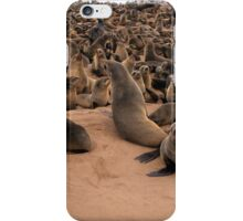 Cape Cross seal colony. The Cape fur seal (Arctocephalus pusillus pusillus)  iPhone Case/Skin
