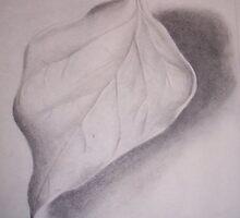 leaf by Todd Weidman