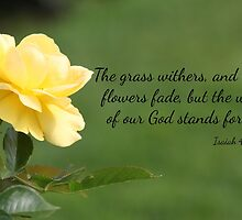Yellow Rose with Isaiah 40:8 by AngelaBishop