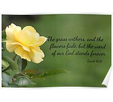 Yellow Rose with Isaiah 40:8 Poster