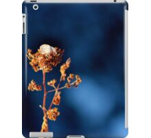 Ice Cap  iPad Case/Skin