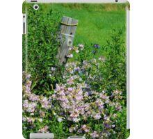 Meadow Flowers: Bouncing Bet iPad Case/Skin