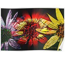 Sunflower Maze Poster
