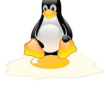 LINUX TUX  PENGUIN EGG MISCARRIAGE  by SofiaYoushi