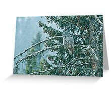 Great Grey Owl in a Snowstorm Greeting Card