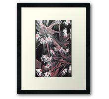 spike daisy rose Framed Print