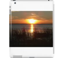 Sunset Through The Water Grass iPad Case/Skin