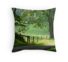 Tranquil Path. Throw Pillow