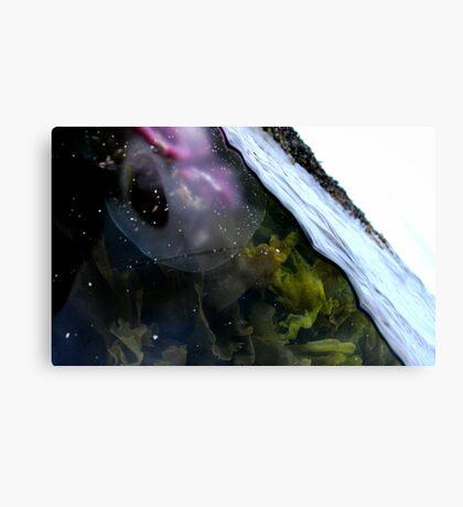 Sanna Canvas Print