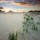 Betty's Bay by Hougaard Malan