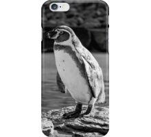 Penguin in Black & White iPhone Case/Skin